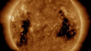 SDO-193 Image of Coronal Holes